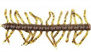 【アーキー】リアル虫パターン。ソルティクローリンフライの動きがヤヴァイ。