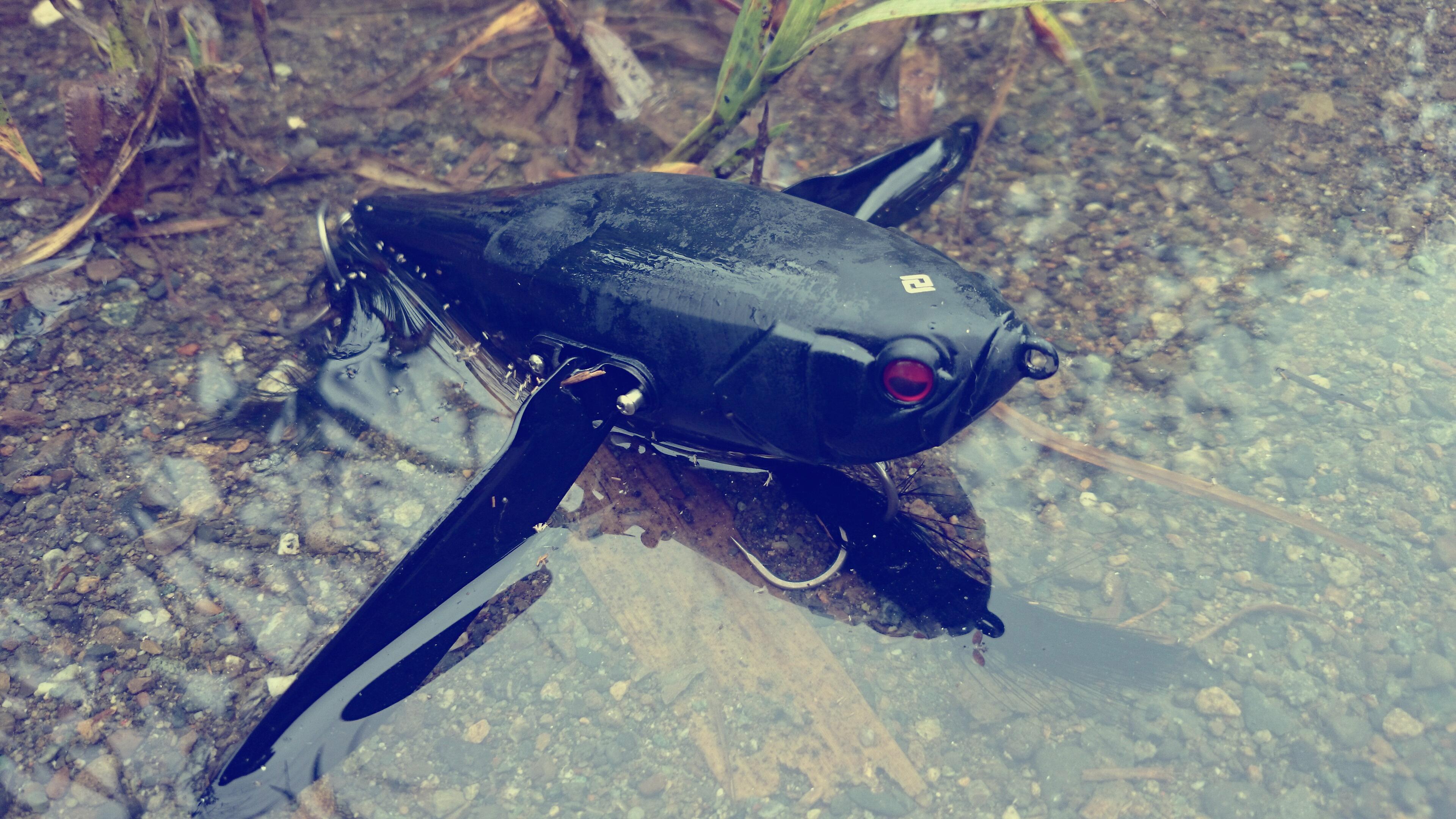 【デカダッジインプレ】魚を呼ぶ力&使いやすさMAXクローラーベイト