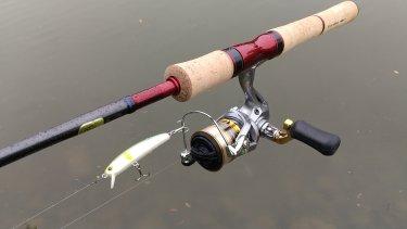 久しぶりの釣行記。お魚さん触れたぞの巻。