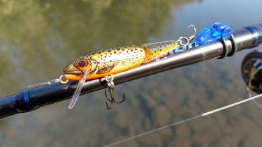 1月のバス釣り日記。冬の池で印象的だったことをまとめる。