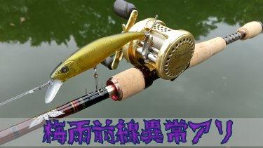 【釣り日記】梅雨の中久しぶりにバス釣りしてきただけの話